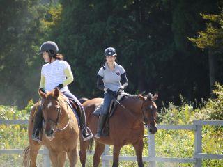 馬との楽しいひと時を!