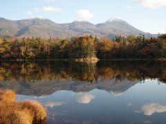 秋の知床五湖。季節によって様々な表情を見ることができます。