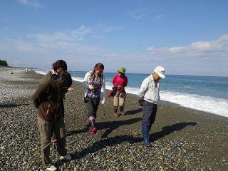 海のきれいな越中宮崎海岸(ヒスイ海岸)で、ヒスイを探します