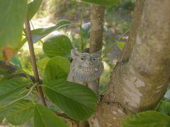 工房前の木蓮の木の上で魔よけ!