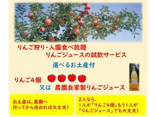 りんご狩り園内食べ放題とりんご4個又は自家製ジュースの選べるお土産付