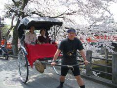 桜の時期は写真撮影もバッチリ!