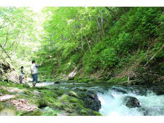 森の中の渓流で釣りをします。自然いっぱいで気持ちいい!