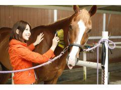 馬との触れ合い。仲良くなったら安心して乗れますね