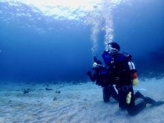 クリアで青い海が広がる朝イチの水中世界。思わず見入ってしまうほど綺麗です(^^)♪