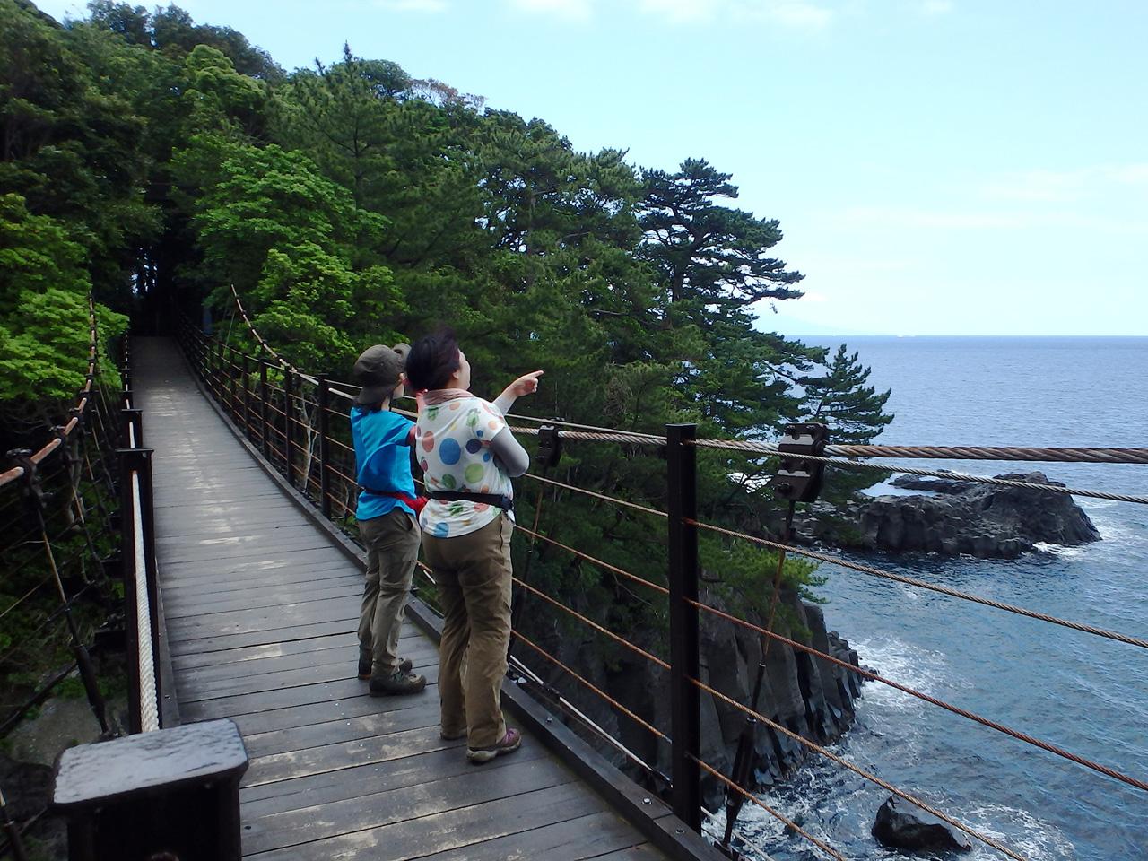 【伊豆高原】スリル満点!断崖絶壁に架かる吊り橋・城ケ崎海岸ジオウォーキング