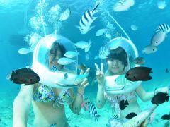 たくさんの熱帯魚が出迎えてくれますよー!