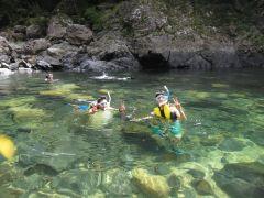 夏場は透明な川で泳いで魚を探しましょう♪