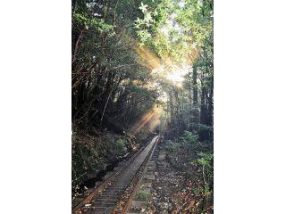 登山口へ到着したら朝ごはんと準備運動。出発からしばらくは朝日を浴びながらトロッコ道を進みます。
