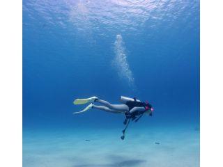 無重力の水中、楽しいダイビングを楽しみましょう