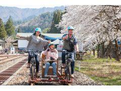 桜の季節は、4月半ばくらいです。運が良ければ、カモシカさんに遭遇しやすいのもこの季節。