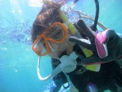 日南市南郷の海にて体験ダイビング!