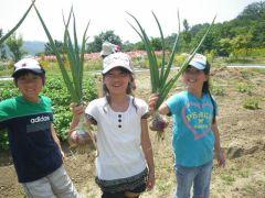 農園で収穫した野菜をトッピングします(収穫できない時期もあります)