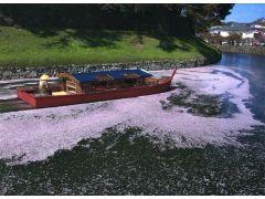 平成18年の彦根城築城400年際より運航を開始。ひこにゃんと同時に誕生しました★
