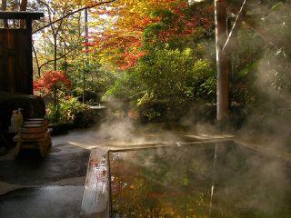 秋の自然に囲まれ、極上の湯あみをご堪能ください。心と体に優しい「ゆ宿ランチ」もご一緒にお楽しみいただけます。