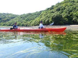 【鳴門・シーカヤック】鳴門の海に漕ぎ出そう!プライベートビーチでランチ!シーカヤックランチコース
