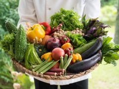 季節に合った食材をご用意しております