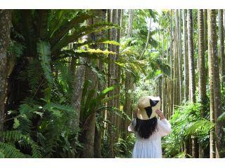 自然溢れる植物園。日本最大級のユスラヤシ並木