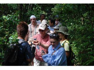 亜熱帯の森トレッキングのツアー中、珍しい動植物をガイドが詳しく説明致します。