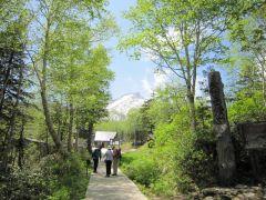 黒岳五合目散策路。