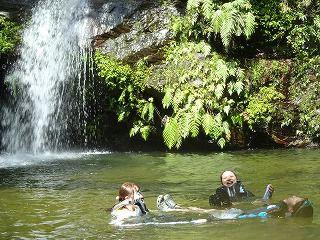 ご家族で最高の夏の思い出を!沖縄やんばるの清流トレッキングと滝つぼ遊び