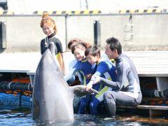 イルカと握手♪