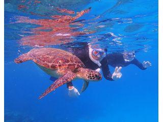 【グループ割引】屋久島でシュノーケリング ウミガメを探しに行こう(午後 半日)