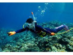 当店は沖縄県久米島でダイビングサービスを主催しています。美しい久米島の海でダイビングを楽しみませんか。