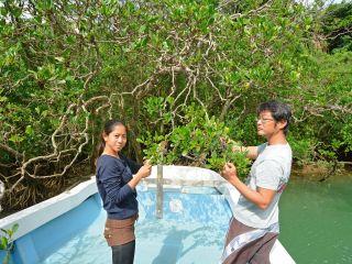 沖縄本島で最大の流域面積を誇る比謝川で亜熱帯の自然を観察しよう!
