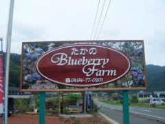 フルーツ街道沿いにある「高野BlueberryFarm」という看板が目印です。