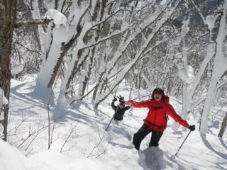 【プライベートでご案内】眺望抜群!袴岳ブナの森コース