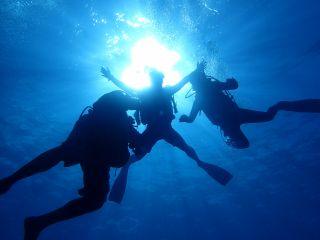 【茅ヶ崎・体験ダイビング】初めての方も楽しめる!1ビーチ体験ダイビング♪