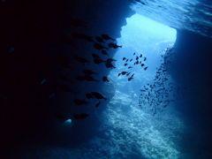 青の洞窟内