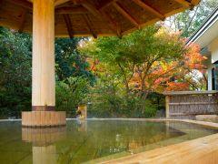 庭園露天風呂 いやしの湯