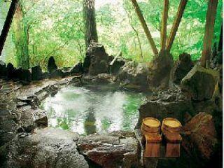 6種類の天然温泉内湯と露天風呂を無料貸切 眼下に小川や原生林を見渡せる大岩風呂 10人は入れる広々露天をお二人で無料貸切。