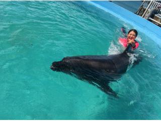 イルカの背ビレにつかまって泳いじゃおう!