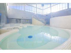 日本最大級の大きさを誇るござらっせの「炭酸温泉」はすぐ体に気泡がつきます!高濃度のシュワシュワ炭酸温泉を満喫してください!