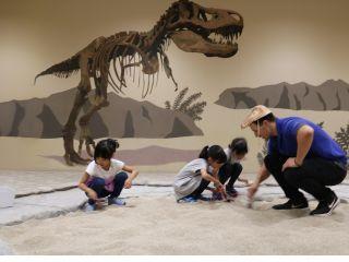 大人気の化石発掘イベント付き!好きな化石を一つお持ち帰りいただけます♪