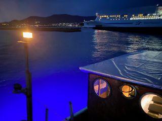 水中をブルーライトで彩る映え映えナイトクルーズ