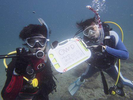 【和歌山市内から送迎付き】ダイビングライセンス Cカード取得コース