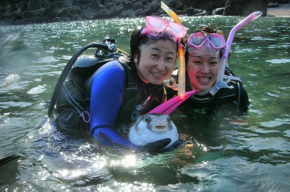 【海洋ボートからの体験ダイビング&スノーケリング】【無料送迎・1ドリンクサービス...