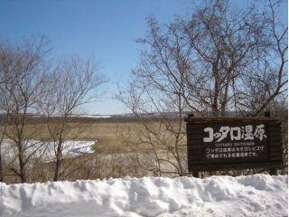 雪景色のコッタロ湿原