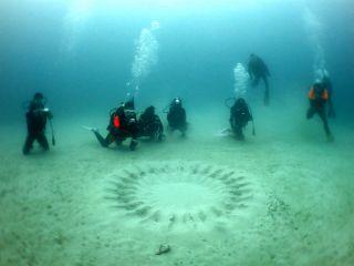 4月から8月頃までは、『海底のミステリーサークル』を見ることもできます。