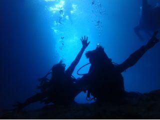 青の洞窟体験ダイビング 水中写真・餌付け無料 完全貸切