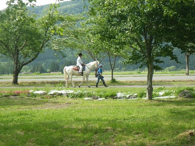 【人気№1★★★】 ゆったり歩いてトレッキング乗馬*40分コース 《料金》おひと...