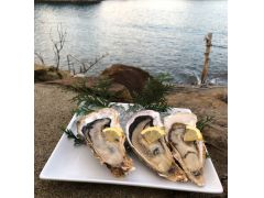 【事前予約限定】生牡蠣「桃こまち 極-KIWAME-」4個1,500円 伊勢神宮奉納のブランド牡蠣です!