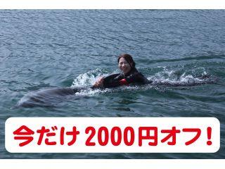 4/23(金)まで割引!! 【うみたま体験パークつくみイルカ島】イルカと泳ごう!〜ふれあい体験〜