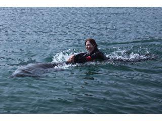 イルカにつかまって引っ張られるプログラムです。