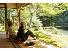 郡上八幡散策!日本庭園の美しいお寺で休憩