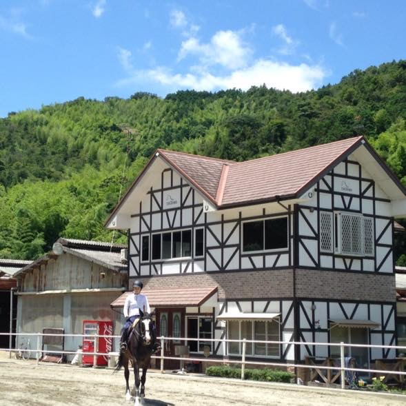 ビジター騎乗のプラン♪大きな馬の背中に乗って広場で乗馬体験ができます.
